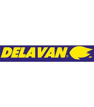 Gicleur Delavan 1,10/80°A