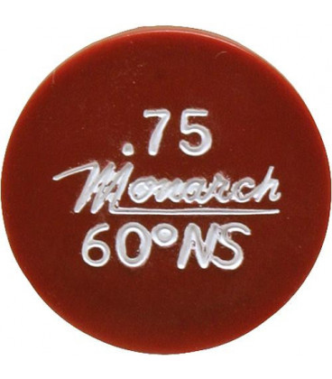 Gicleur Monarch 0,50/30°N